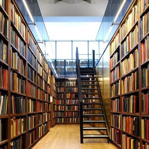Библиотеки Ершичей